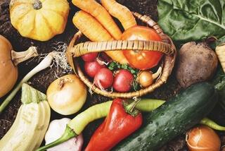 かごに入った緑黄色野菜数種類