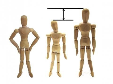 大きさの違う木の人形