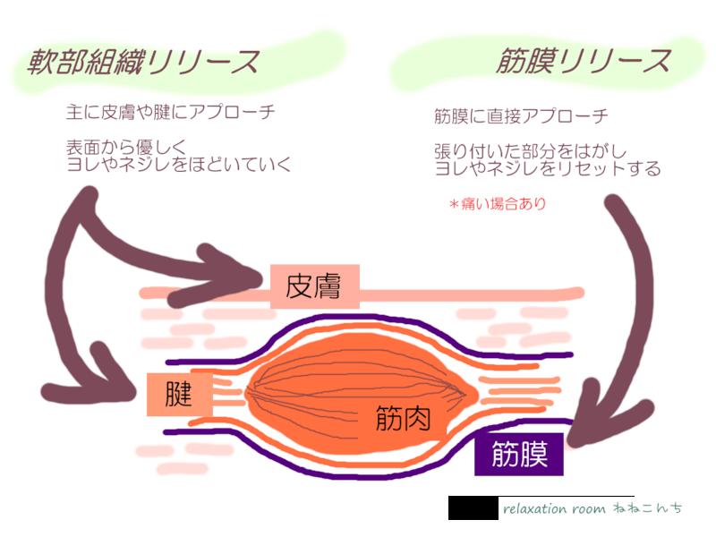 筋膜リリースのイメージ