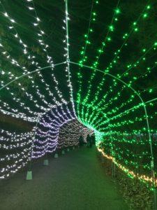 光のトンネル内部