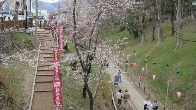 ケヤキ並木の遊歩道
