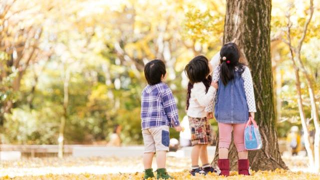 公園で気を見上げる3人の子供