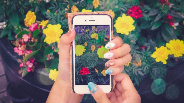 スマホで花の撮影