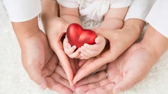 ハートを持つ親子の手